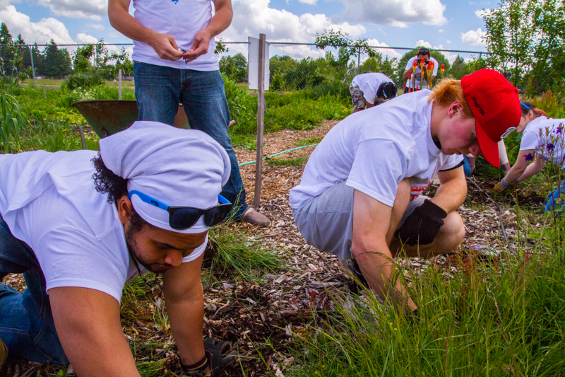 Aaron Tagabeul er students pull weeds atand oth the Redeemer Community Garden
